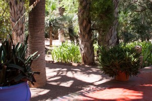 Jardin Majorelle Look Marrakesch Travel Blog